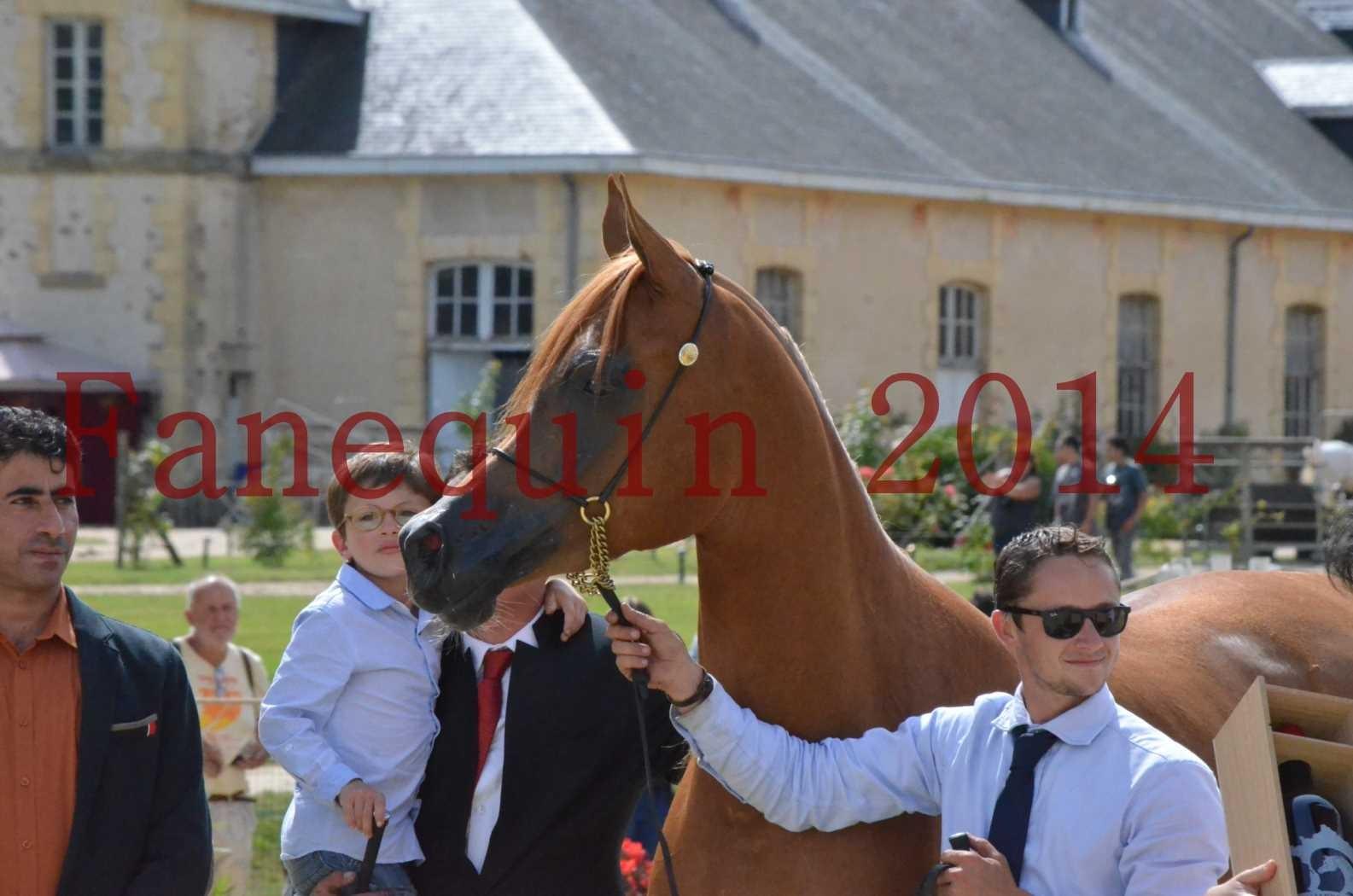 CHAMPIONNAT DE FRANCE 2014 A POMPADOUR - Championnat - LUTFINAH JA - 68