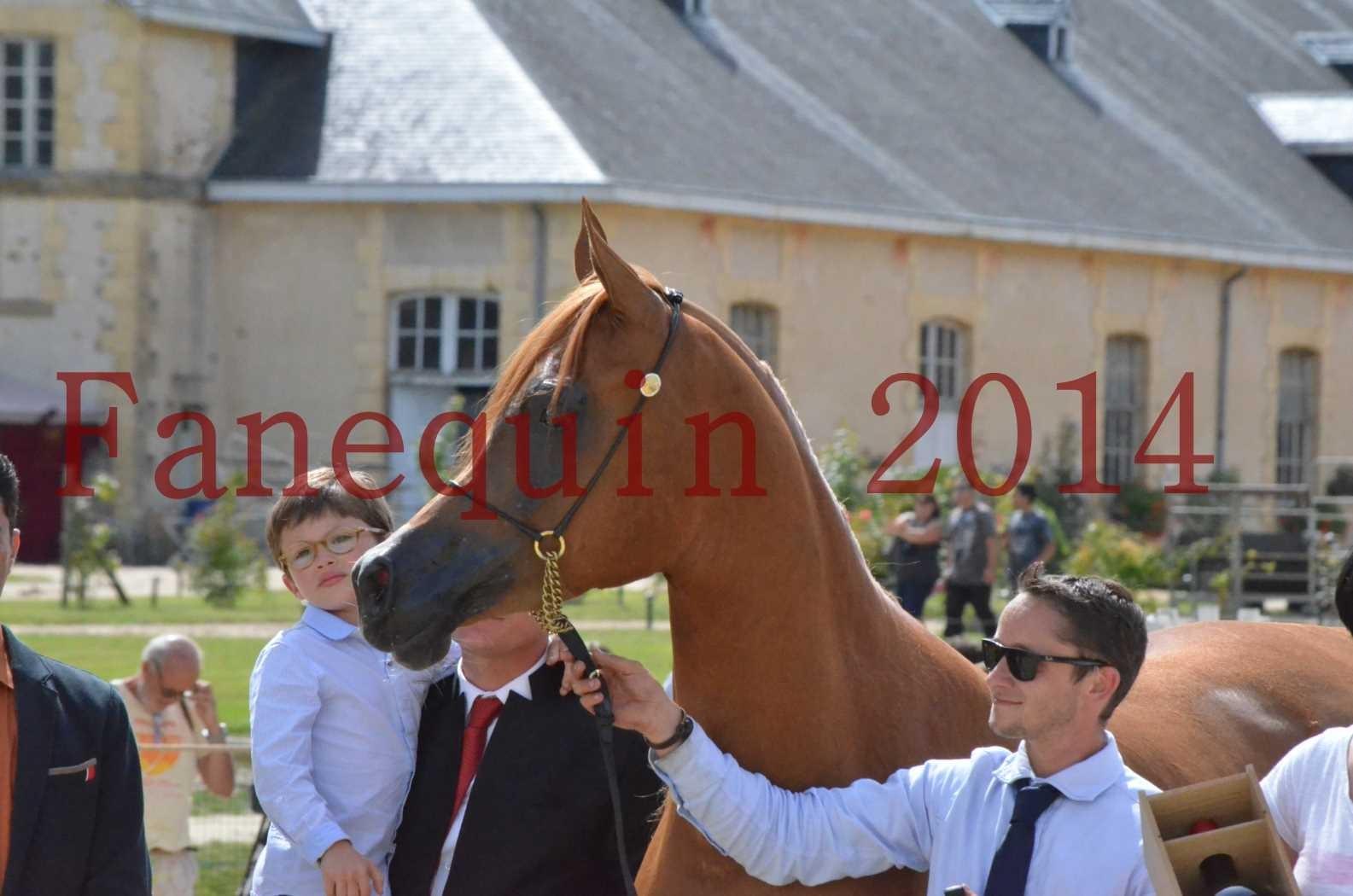 CHAMPIONNAT DE FRANCE 2014 A POMPADOUR - Championnat - LUTFINAH JA - 71
