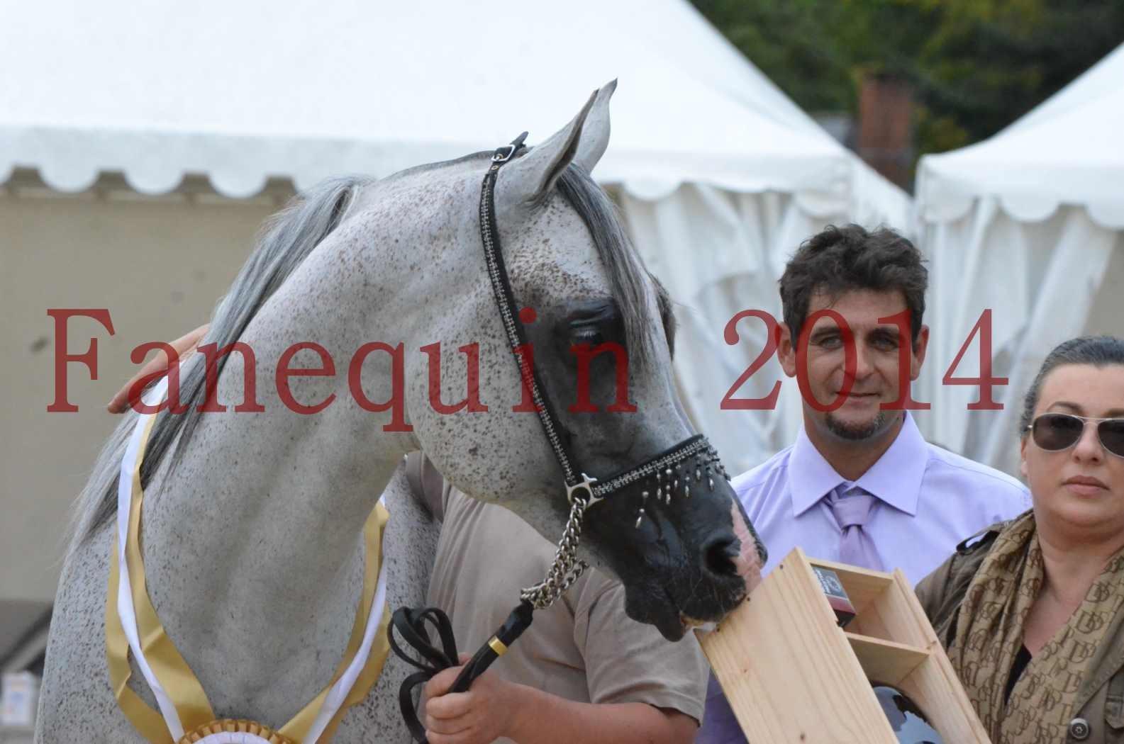 CHAMPIONNAT DE FRANCE  2014 A POMPADOUR - Championnat - SHEYK DE GARGASSAN - 28