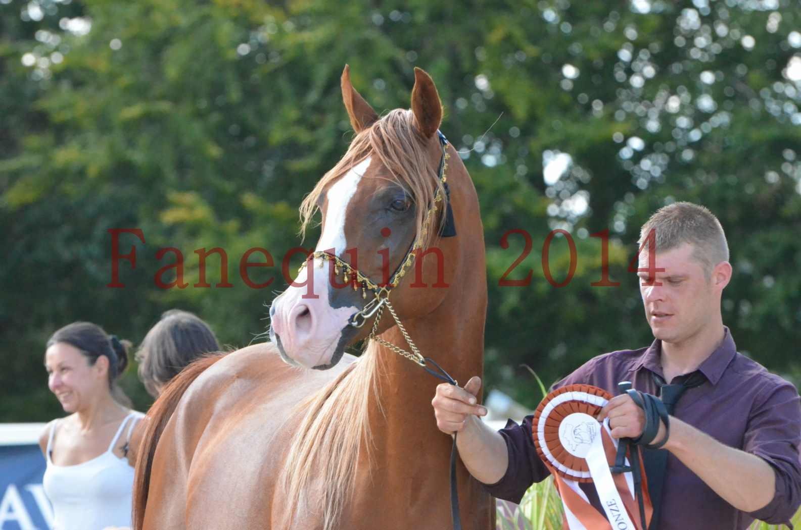 Championnat de FRANCE 2014 - Amateurs - SELECTO IBN SAMAWI - 103