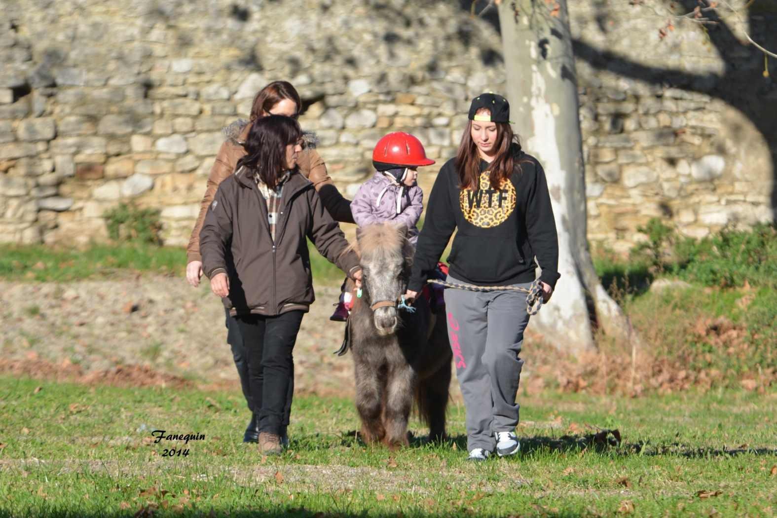 Marchés de Noël 2014 - Promenades en Poneys à Pignan - 04