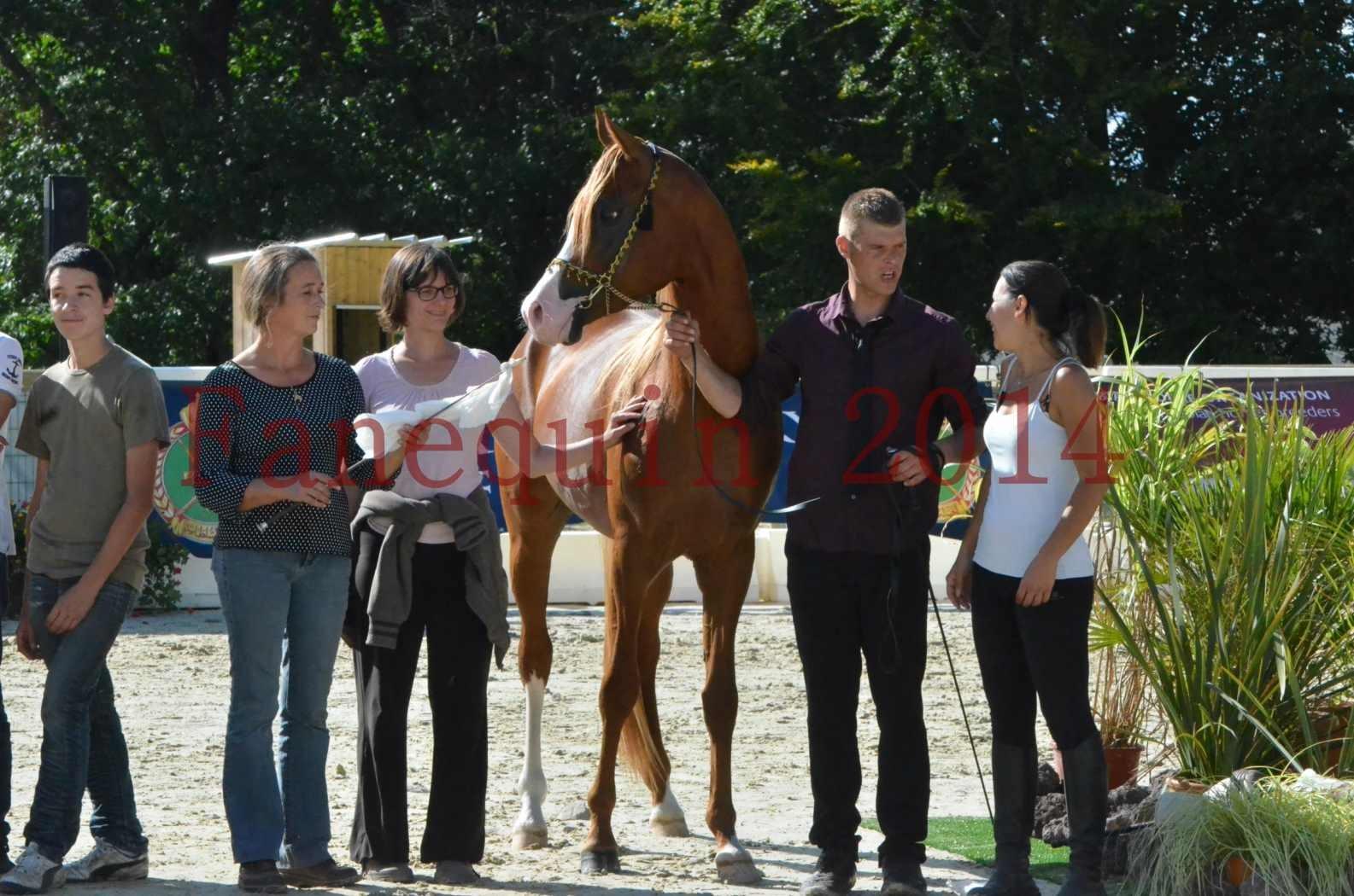 Championnat de FRANCE 2014 - Amateurs - SELECTO IBN SAMAWI - 087