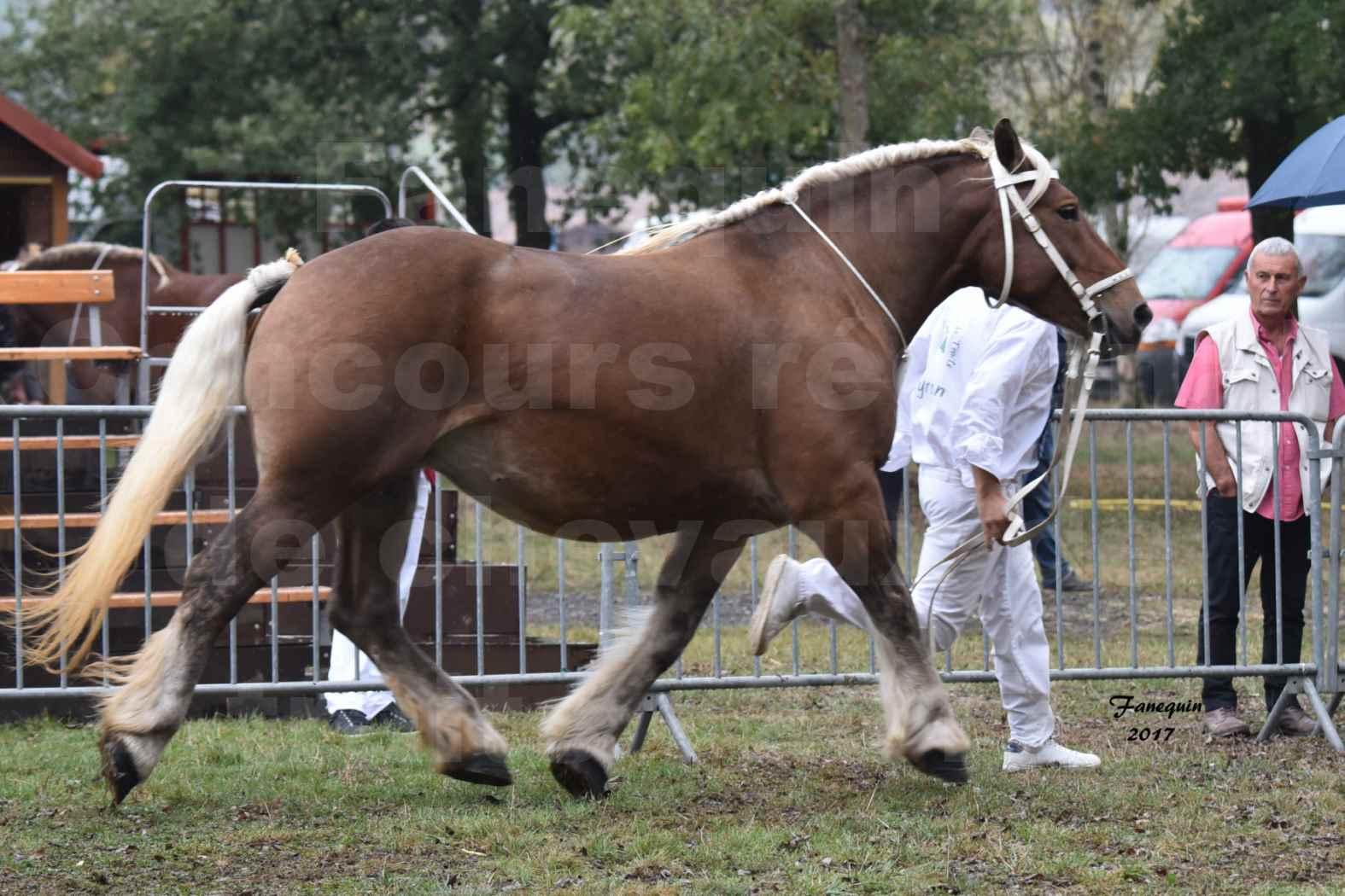 Concours Régional de chevaux de traits en 2017 - Jument & Poulain Trait COMTOIS - BESMA DE GRILLOLES - 02