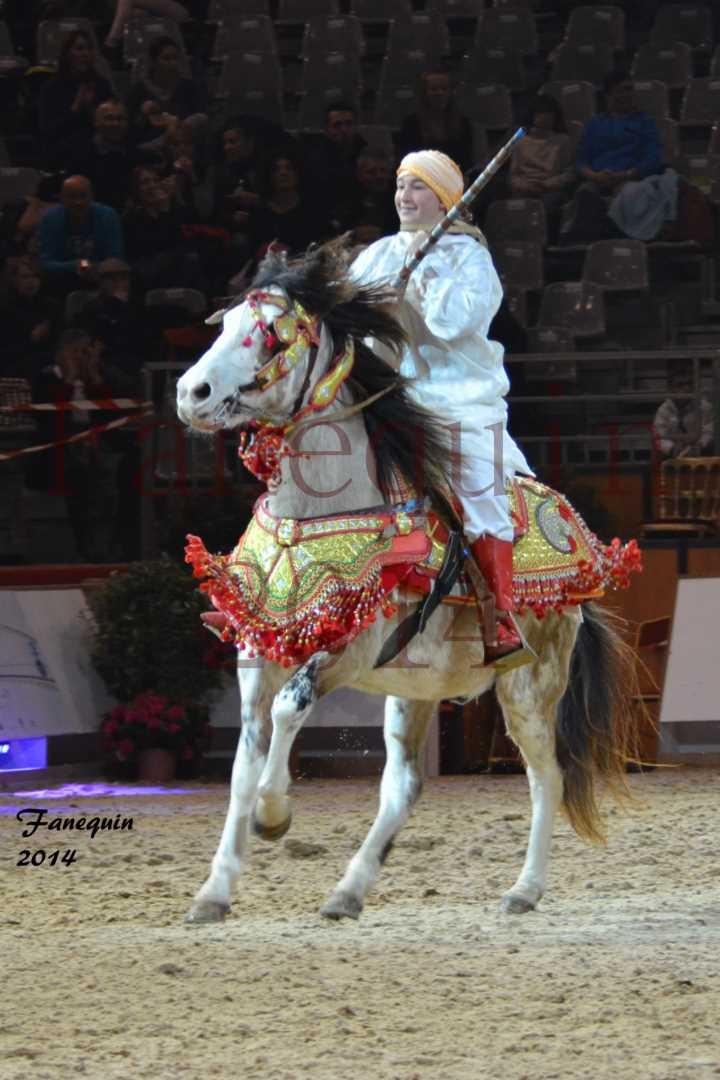 Show des races - Chevaux BARBE 03