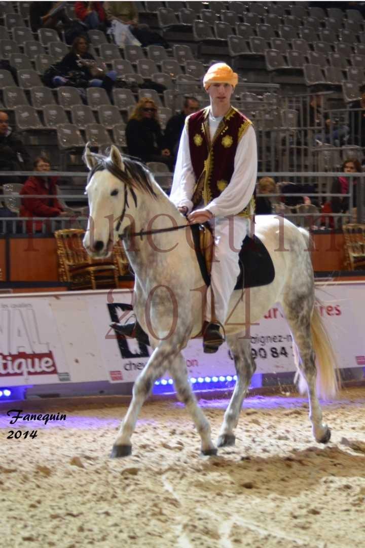 Show des races - Chevaux BARBE 27