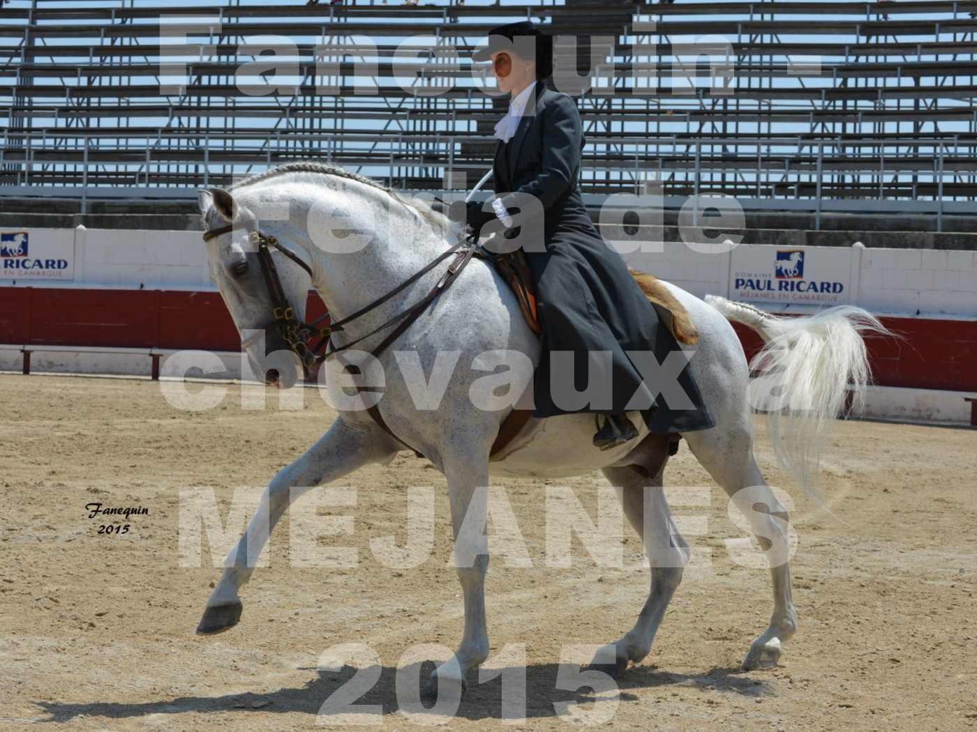 Feria du cheval 2015 à MEJANES - 4