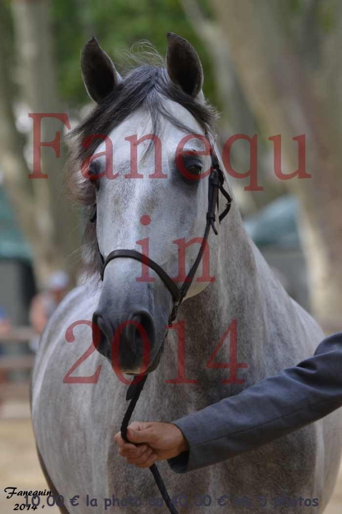 Championnat de FRANCE de PRE-PORTRAITS-06
