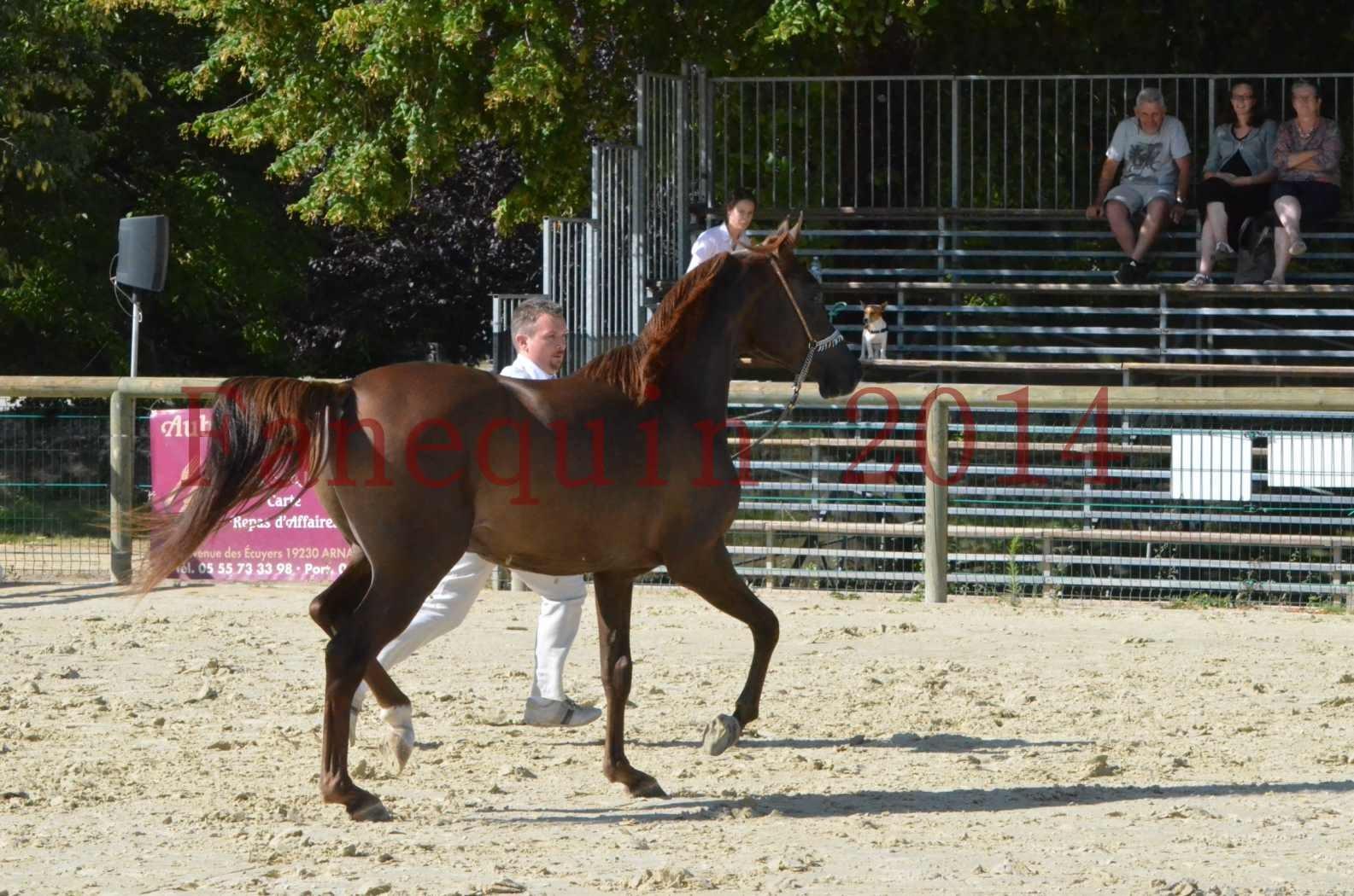 Championnat de FRANCE 2014 - Amateurs - LAMAL - 49