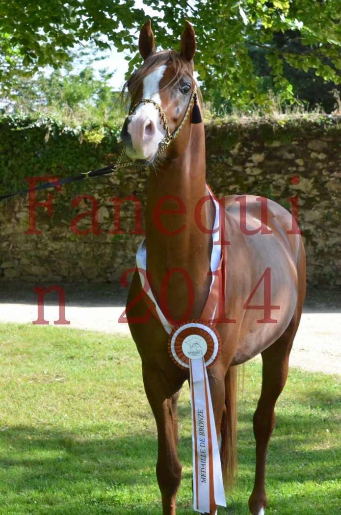 Championnat de FRANCE 2014 - Amateurs - SELECTO IBN SAMAWI - 174