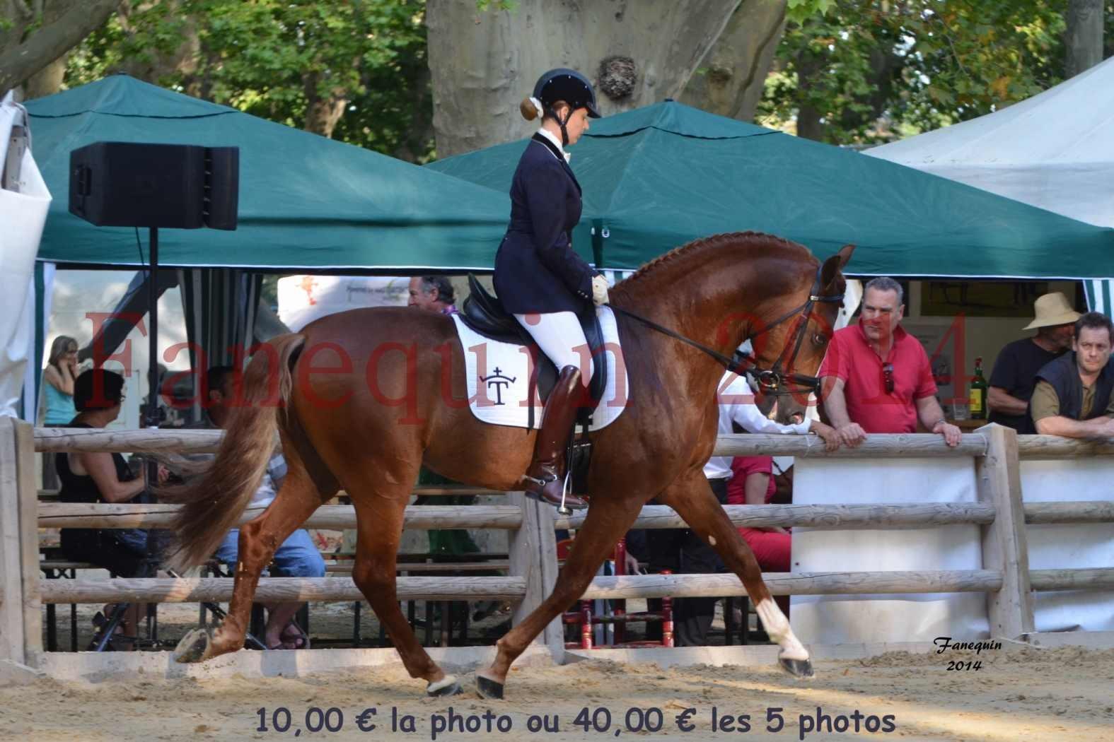 Championnat de FRANCE de PRE-présentation montés-07