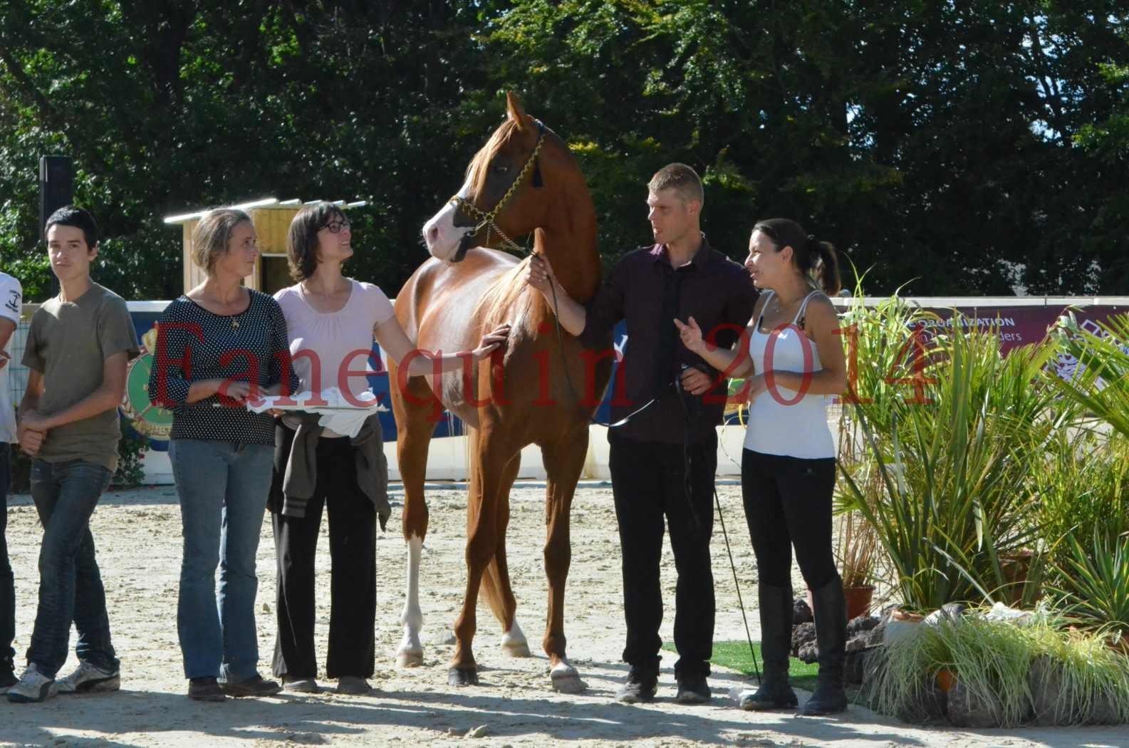 Championnat de FRANCE 2014 - Amateurs - SELECTO IBN SAMAWI - 089