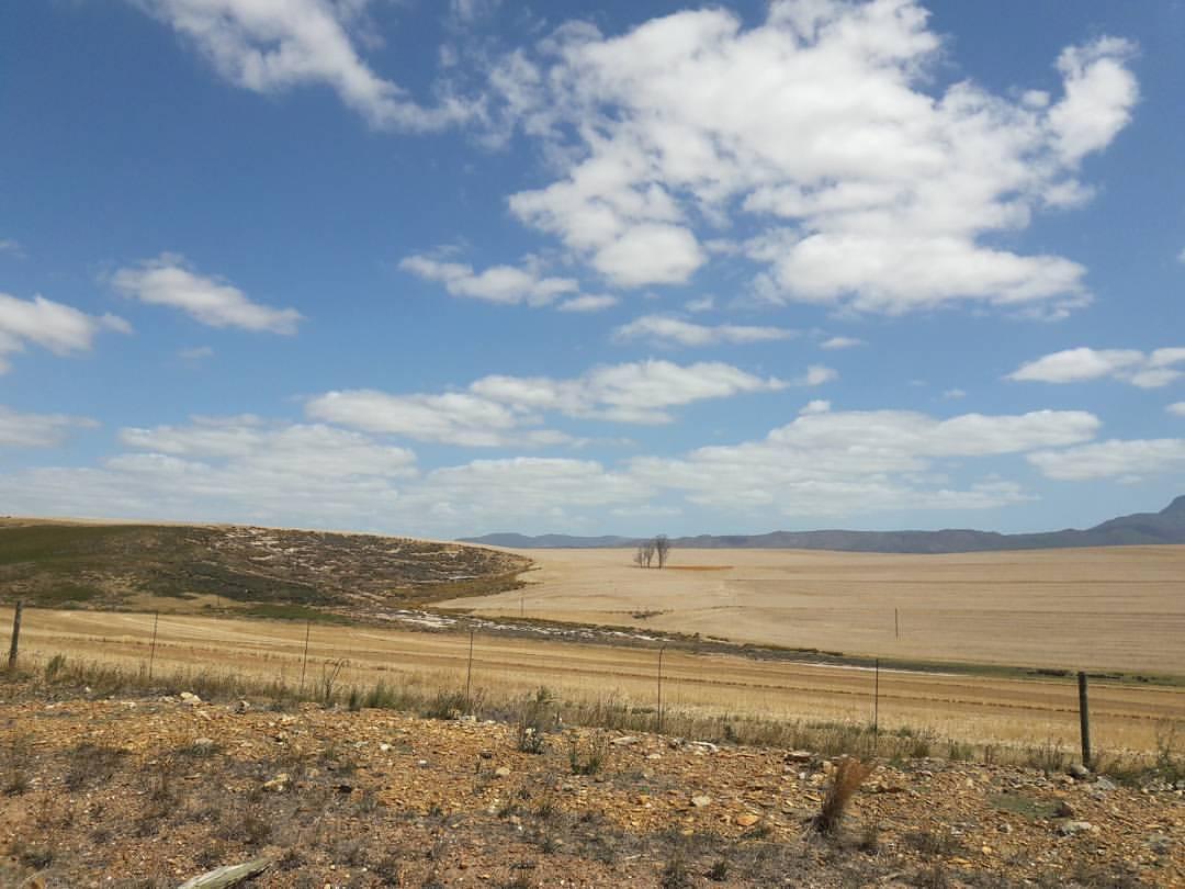 Eindrücke von Südafrika