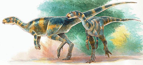 deux rhabdodontes  source : www.palemtopedia.org