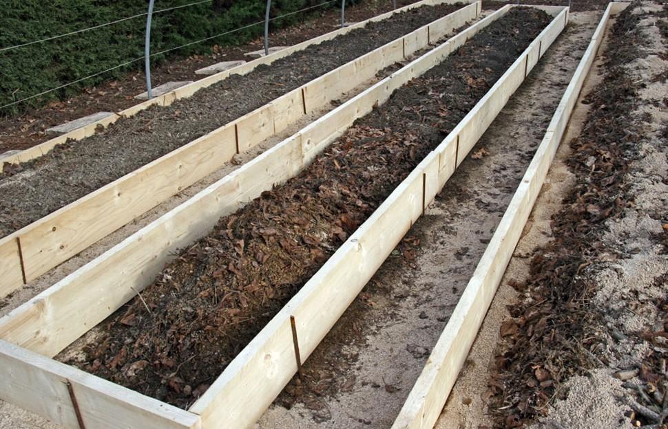 5 Remplissage des buttes : déchets verts, terreau, compost, sable de rivière