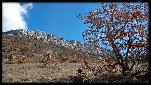 Monts Auréliens