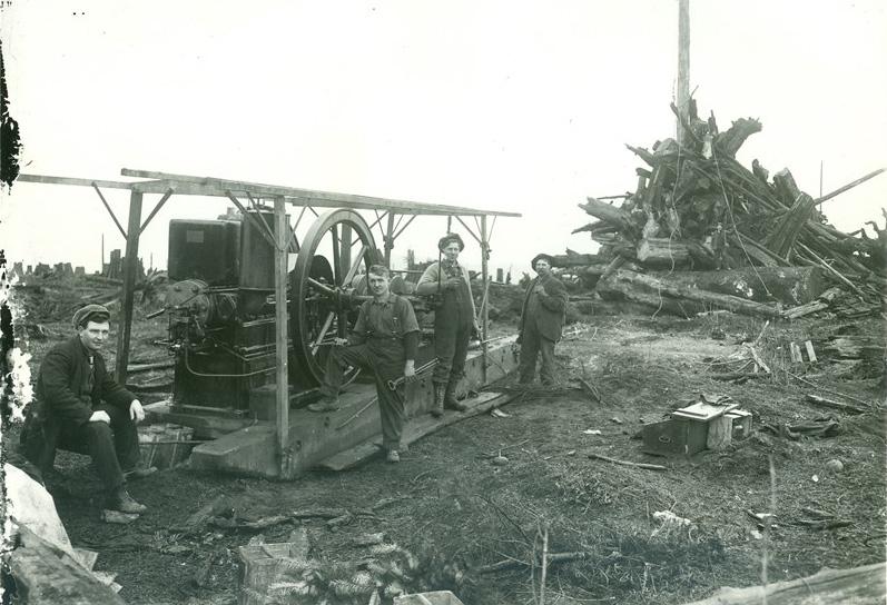 Baumstumpftransport und Landrodung, Arlington USA, um 1900
