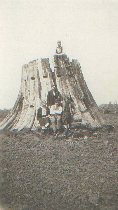 """Das erste """"Haus"""" von Max Eitzenberger - ein Zedern-Baumstumpf (Matilda Strotz, Ludwig Radner, Max Eitzenberger und Fredia Radner, Otto Eitzenberger oben, 1923)"""