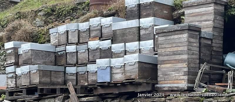 Travaux d'hiver apiculture cevennes