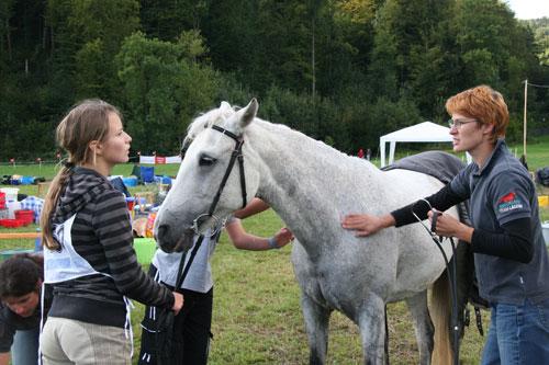 2009, Neuenhof mit Filou