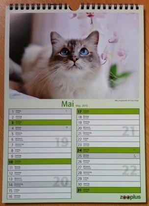Unser Mio, diesen Monat im Zooplus Kalender!