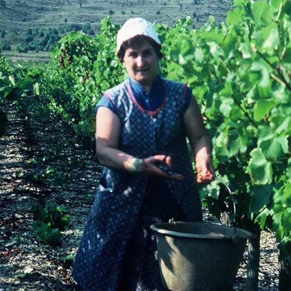 1982 - Marguerite