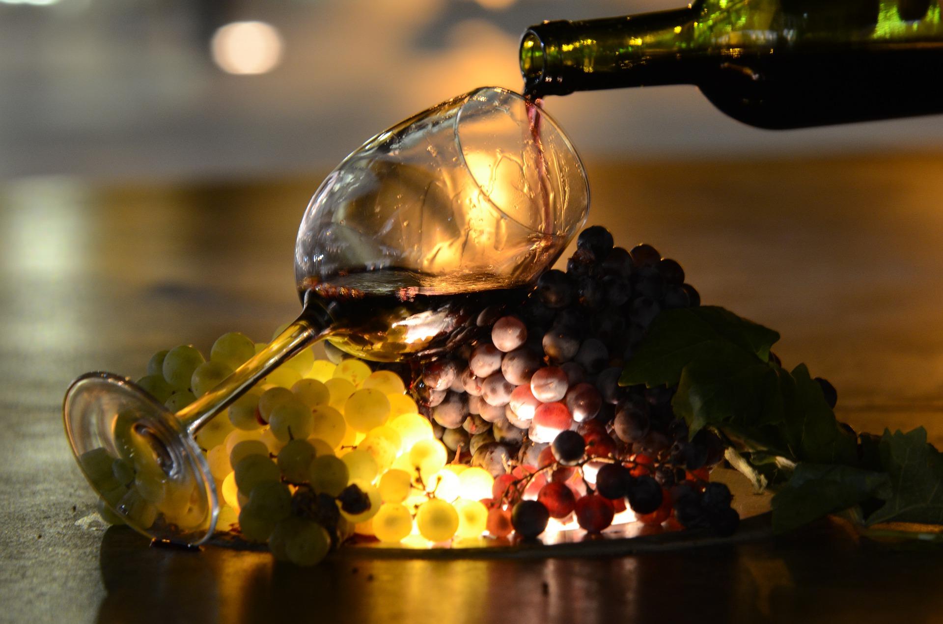 Todo lo que esconde el vino I