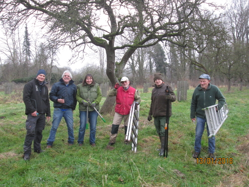 Gruppe von Personen mit Leitern und Werkzeug zum Baumschnitt