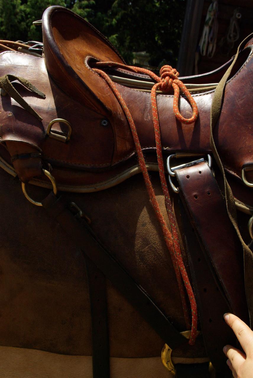 accrocher un cheval de bât à la selle de monte -Noeud de chaise (bowline knot) + noeud de sécurité (security knot)