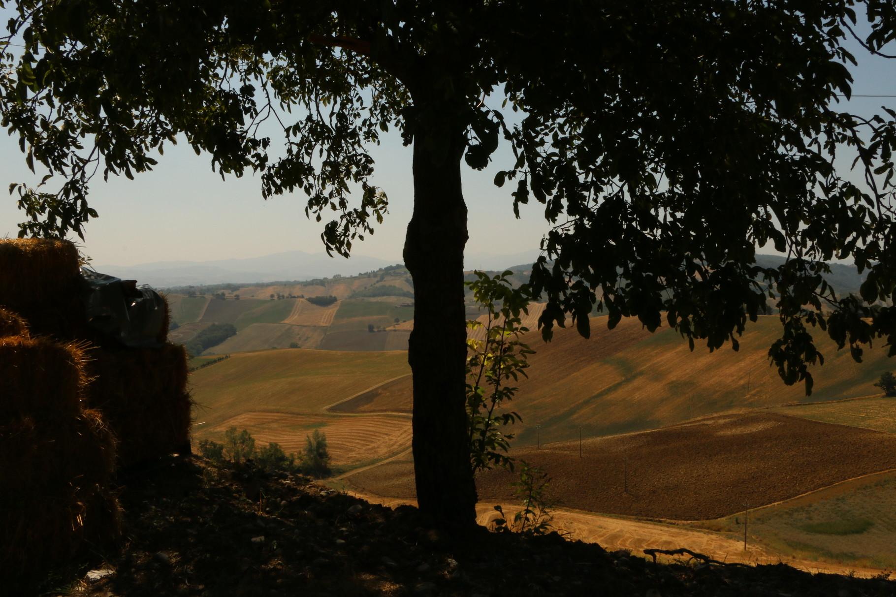 Tappa 19: Fidenza - Fornovo | 34 km