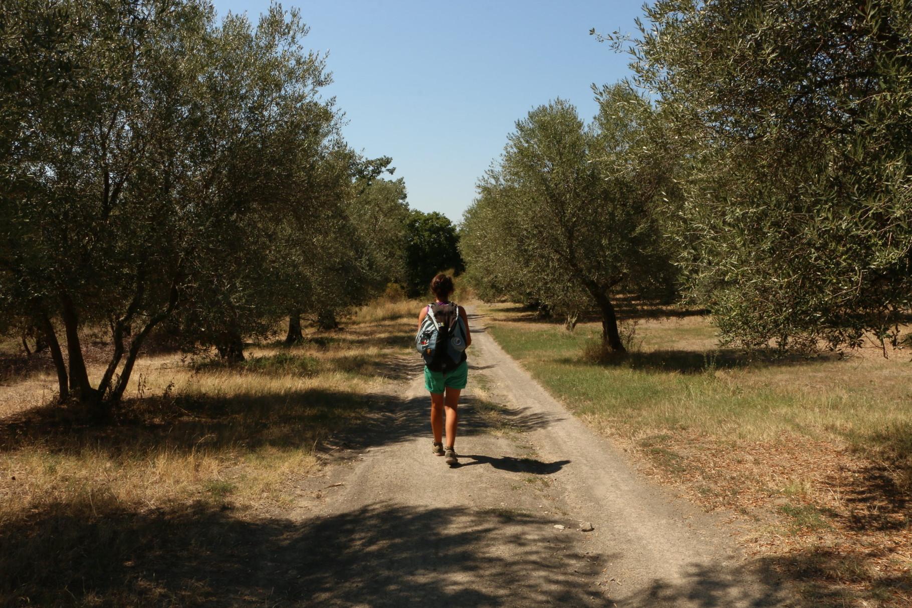 Tappa 43: Campagnano di Roma - La Storta | 24,5 km