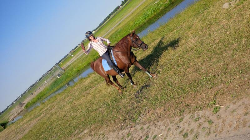 Vanaf nu ga ik ontspannen paardrijden