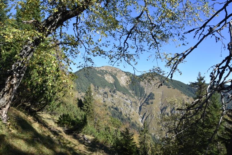Blick vom Aufstieg zum Brünnstlkreuz zur Notkarspitze
