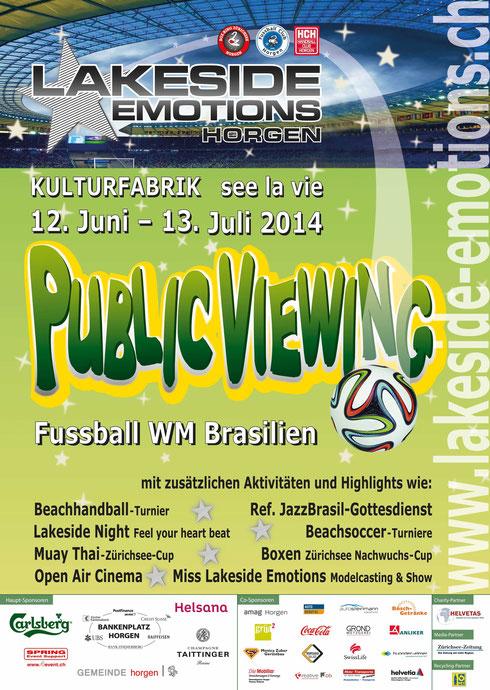www.boxringzuerichsee.ch - im VR & Mitorganisator der Lakeside-Emotions14