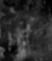 Agrandissement en noir et blanc