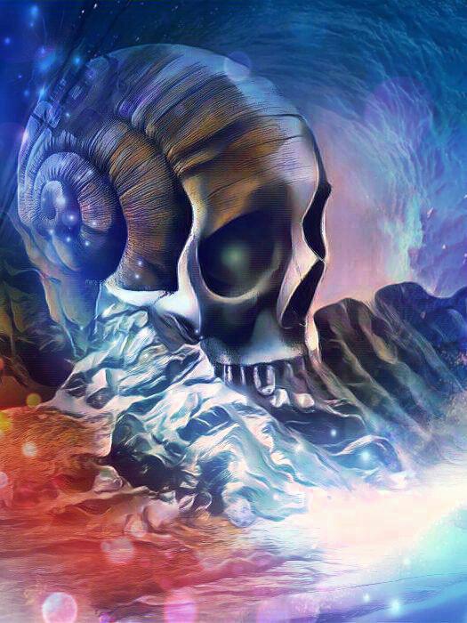 Kunstdruck Skull