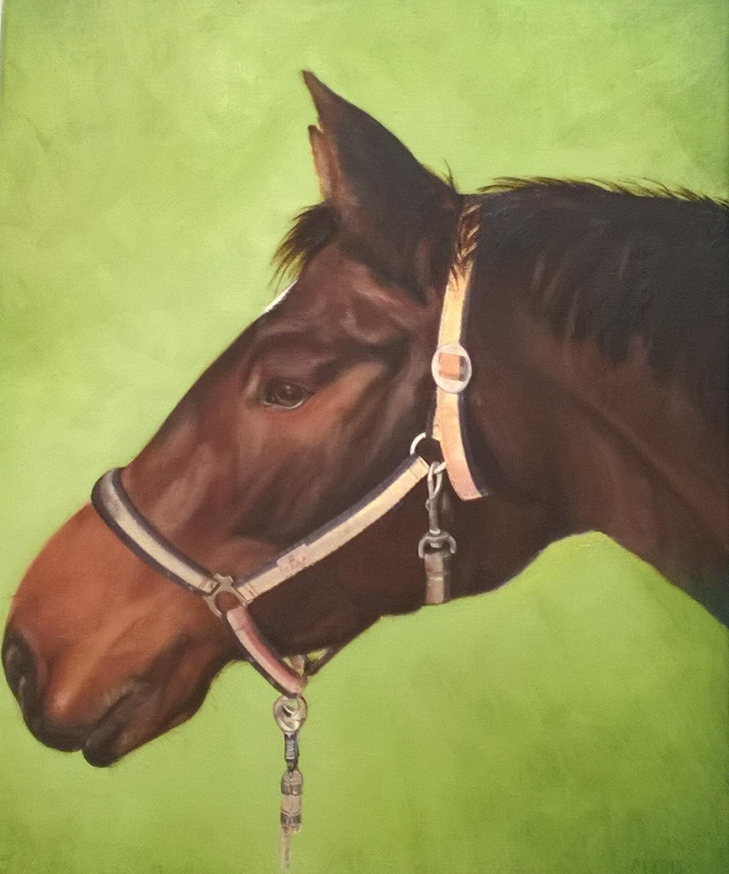 """""""Tara"""" 2016, Öl 50x70 (verkauft)"""