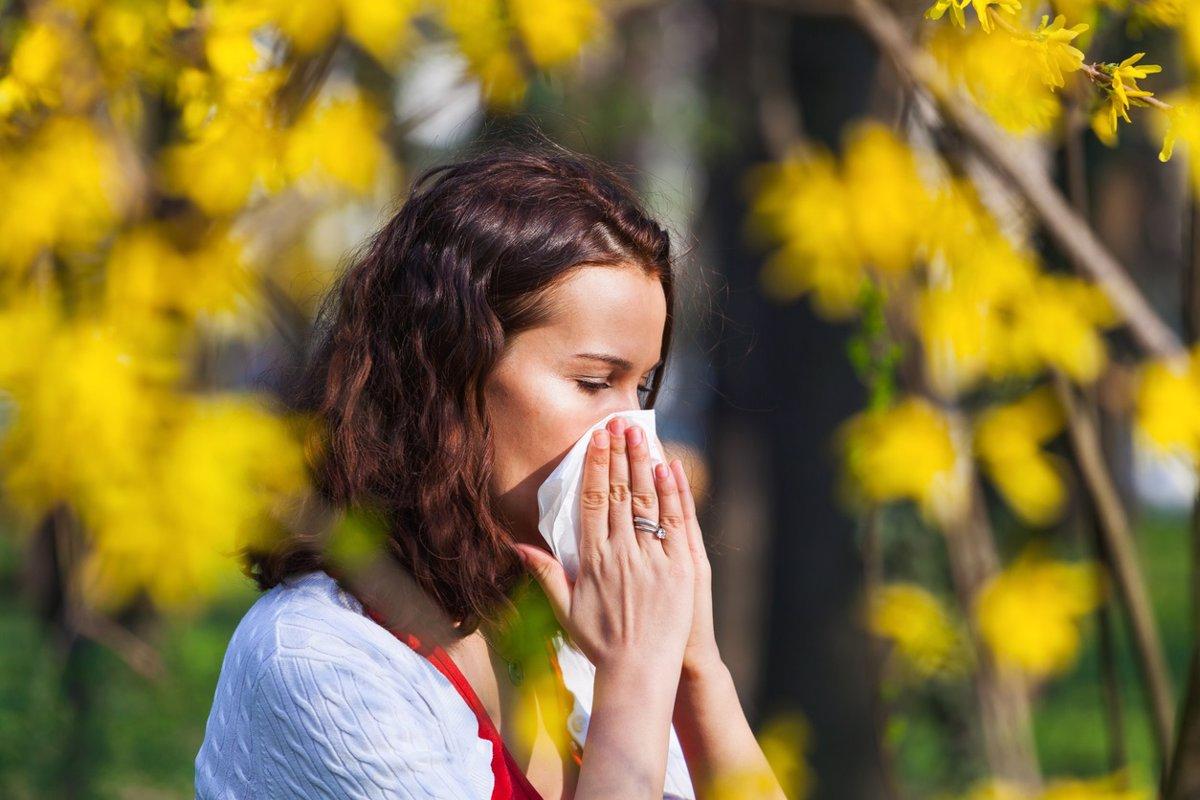 ¿Tienes alergia primaveral? Combátela con aceites esenciales