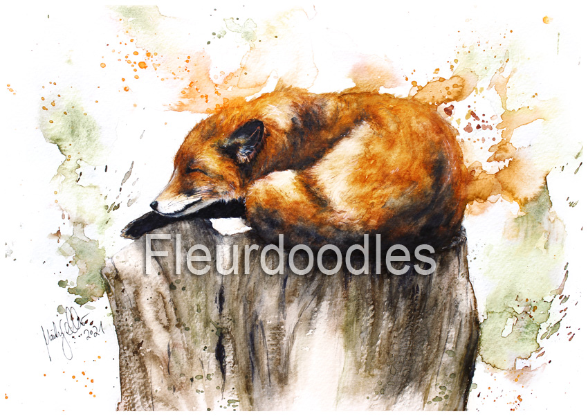 Schlafender Fuchs in Aquarell, ca. 19 x 24 cm, #115