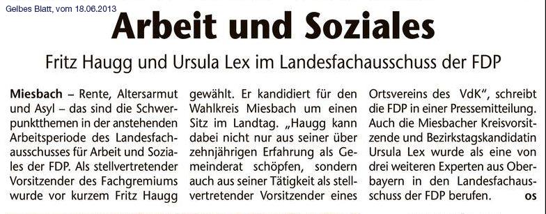 18. Juni 2013: Fritz Haugg und Ursula Lex im Landesfachausschuss der FDP (.jpg)
