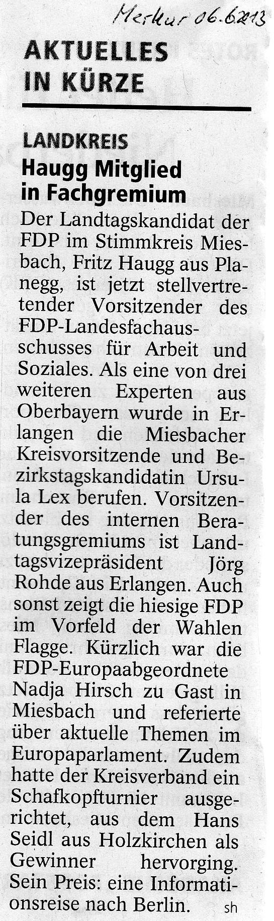 06. Juni 2013: Haugg Mitglied im Fachgremium (.jpg)