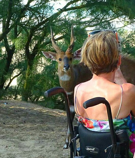 Experienced tour operators that specialize in accessible tourism are key to enabling people with disabilities to travel (picture courtesy of Access2Africa Safaris)