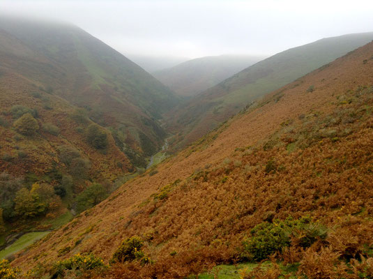 I wouldn't have been surprised to see dragons, dwarves and goblins appearing in the mist of the Shropshire Hills