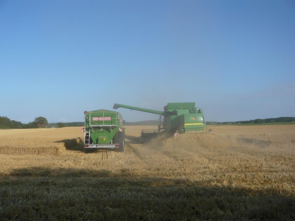 Bei der Getreideernte