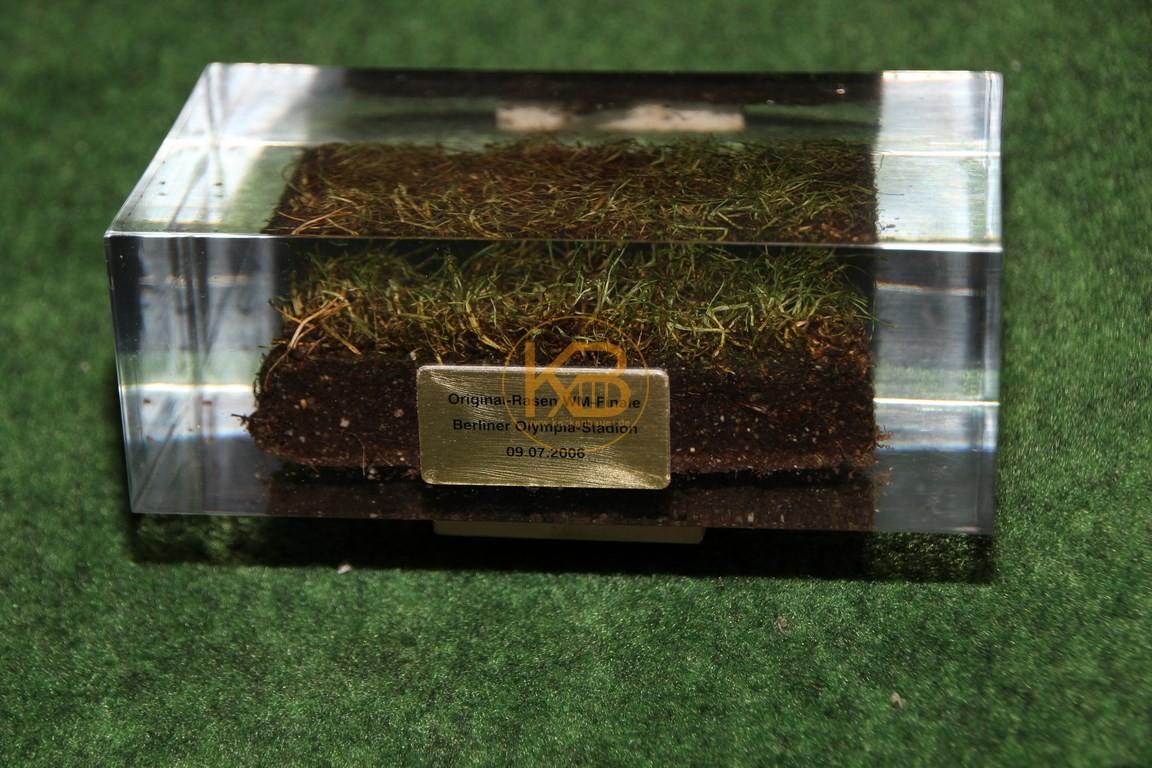 Rasen in Acryl vom Finale der Weltmeisterschaft 2006 in Deutschland.