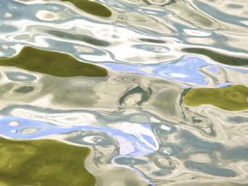 WasserWerke: Gabi Michel