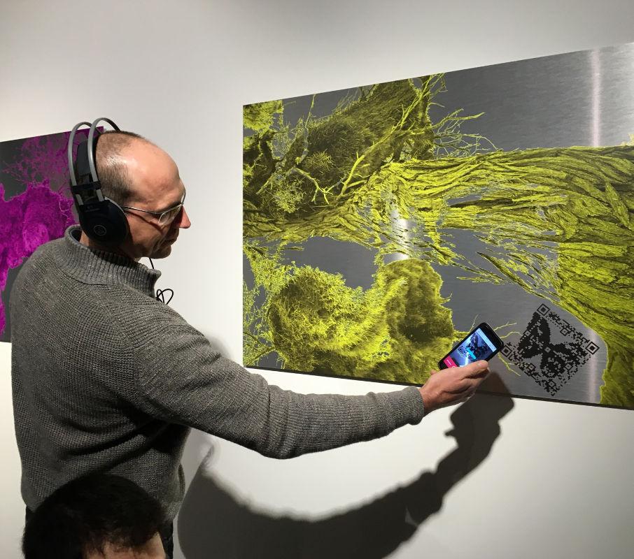 Sabine Schäfer, Audio Biospheres Yellow, 2017, Interaktive Druckgrafik, 75x100 cm.  Der Besucher scannt den QR-Code und hört die Audio-Komposition, Foto: Annette Hünnekens