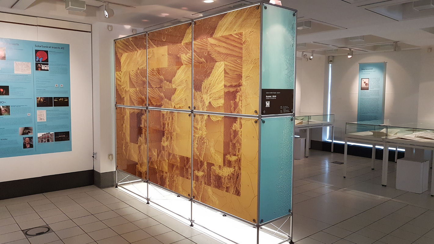 Sabine Schäfer, Scaled, 2019, Installation mit Audio QR-Code, 300x225x50 cm, Rückseite, Foto: Sabine Schäfer