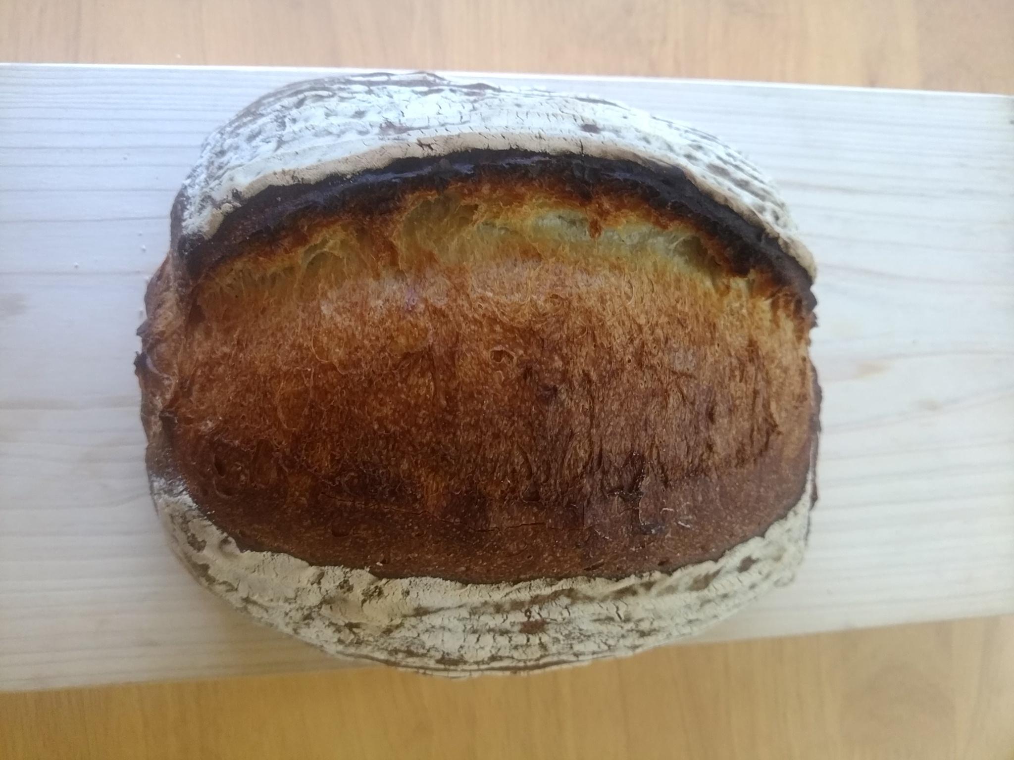中津川 苗木 パン屋 パパン    天然酵母 カンパーニュ  350円         大きなプレーンなパンです。
