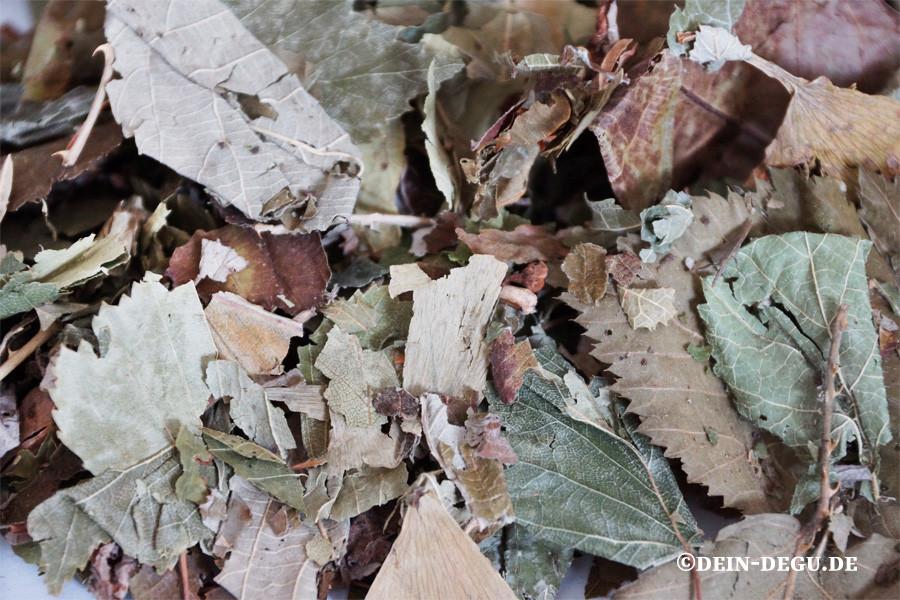 Blätter gemischt