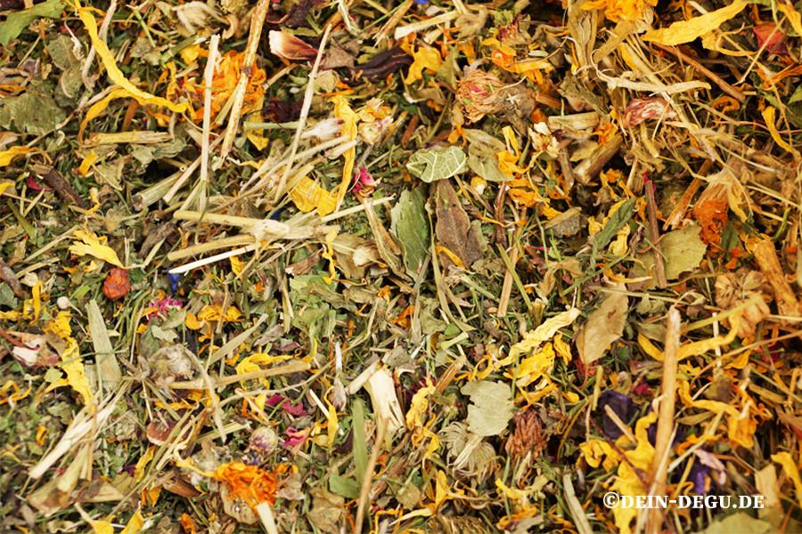 Grundfutter, Kräutern, Gräsern und Strauchblättern